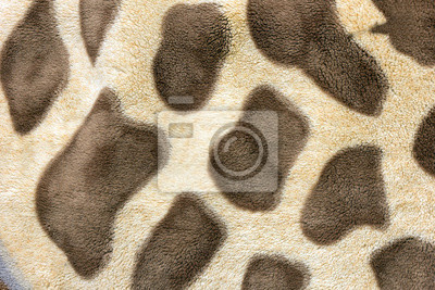 léopard fond