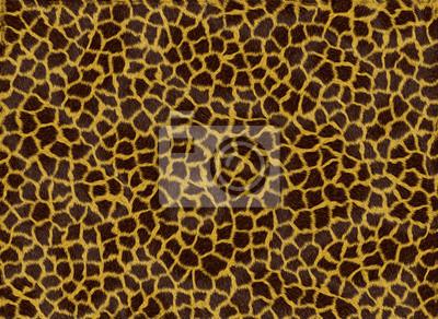 Leopard fond de la peau
