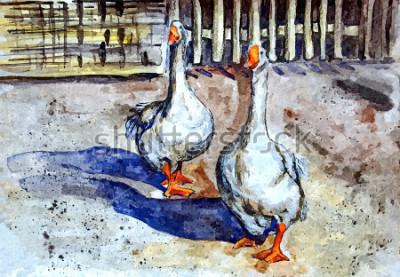 Image Les oies domestiques marchent dans la cour. Dessin aquarelle sur papier. Art naïf. Art abstrait. Peinture à l'aquarelle sur papier.