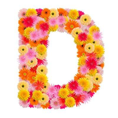 Image Lettre, d, alphabet, gerbera, isolé, blanc, fond