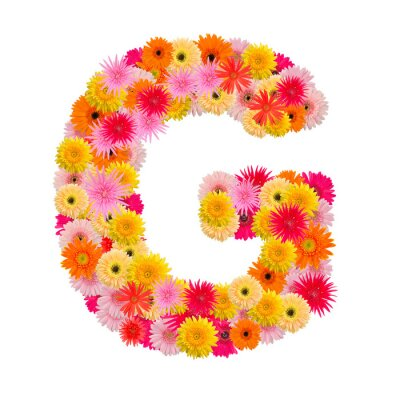 Image Lettre G alphabet avec gerbera isolé sur fond blanc