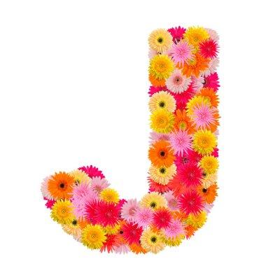 Image Lettre J alphabet avec gerbera isolé sur fond blanc