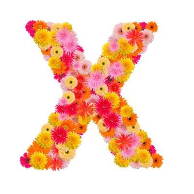 Image Lettre X alphabet avec gerbera isolé sur fond blanc