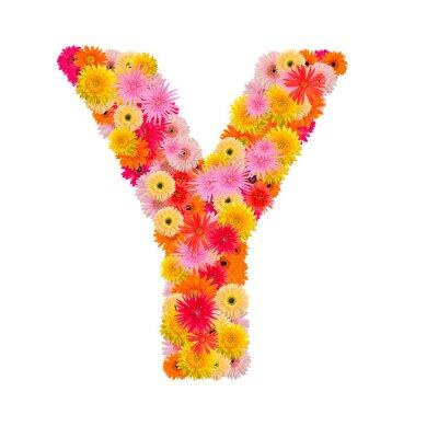 Image Lettre Y alphabet avec gerbera isolé sur fond blanc