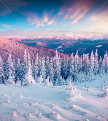 Image Lever de soleil d'hiver fantastique dans les montagnes des Carpates avec des arbres enneigés. Scène extérieure colorée, concept de célébration de bonne année. Photo post-traitement de style artistiqu