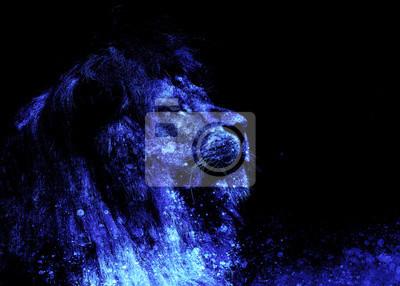Image Lion Face Et Effet Graphique Collage Informatique