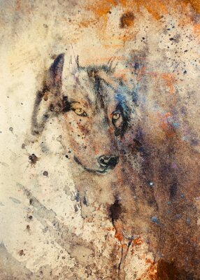 Image Loup, peinture, couleur, résumé, effet, fond
