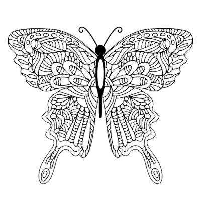 Image Main, dessiné, doodle, papillon