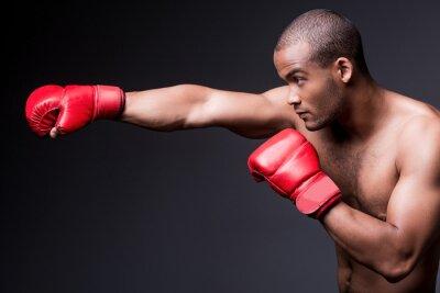 Image Man boxe.