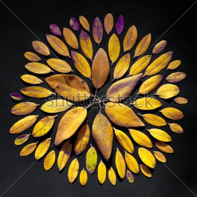 Image Mandala de feuilles à la main. Arrangement de mandala de Bohême fait de feuilles.