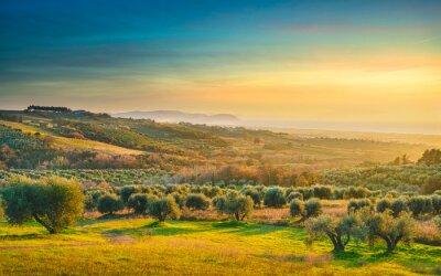 Image Maremma sunset panorama. Countryside, sea and Elba on horizon. San Vincenzo, Tuscany, Italy.