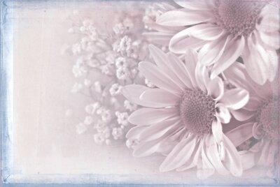 Image Marguerite, bouquet, pastel, texture, bleu, cadre