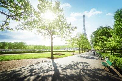 Image Matin ensoleillé et Tour Eiffel, Paris, France