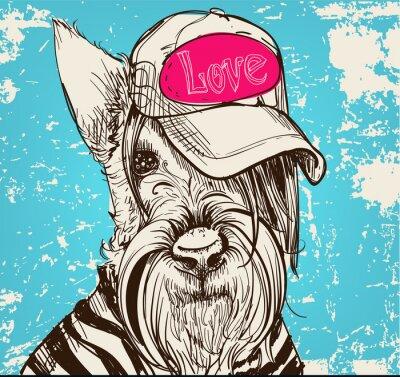 Image Mignon, portrait, écossais, Terrier