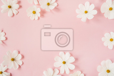 Image Minimal styled concept. White daisy chamomile flowers on pale pink background. Creative lifestyle, summer, spring concept. Copy space, flat lay, top view.