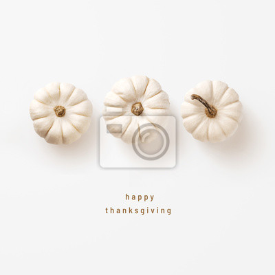 Image minimalist autumn / fall concept or greeting / invitation card for thanksgiving with three white pumpkins in a row - top view / flat lay