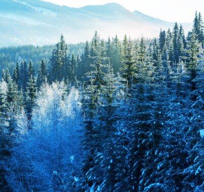 Image Montagnes de l'hiver