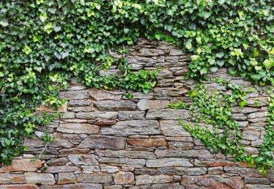 Image Mur