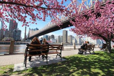 Image New York City / Roosevelt Islande