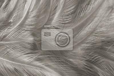 Papeterie en noir et blanc sur le bureau gris calepins crayons