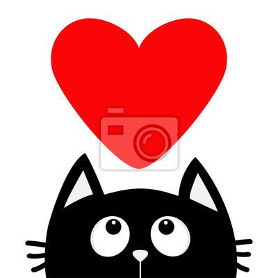 Image Noir Chat Regarder Haut Grand Rouges Coeur Personnage De