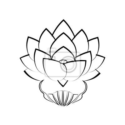 Noir Stylise Image Lotus Fleur Blanc Fond Tatouage Le