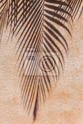 Mur Ocre ombre de palmier sur mur ocre rose peintures murales • tableaux