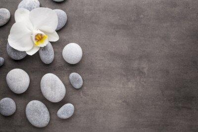 Image Orchidée blanche et spa pierres sur le fond gris.