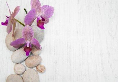 Image Orchidées et pierres de massage