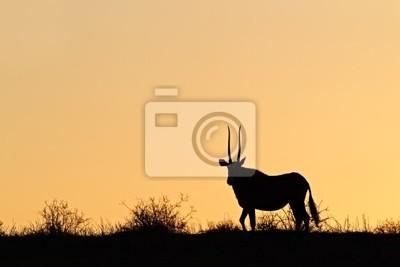 Oryx silhouette