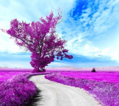 Image Paisaje surrealista. Arbol y camino entre los campos