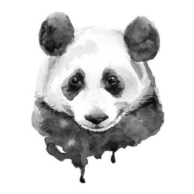 Image Panda.Black et blanc. Isolé