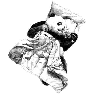 Image Panda Se Trouvant Sous La Couverture Croquis Dessin Vectoriel