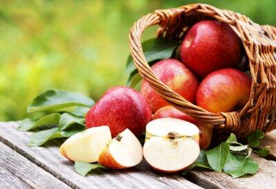 Image Panier avec des pommes fraîches