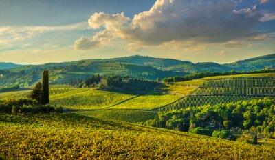 Image Panzano in Chianti vineyard and panorama at sunset. Tuscany, Italy