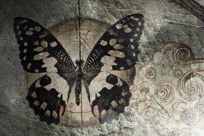 Image papillon