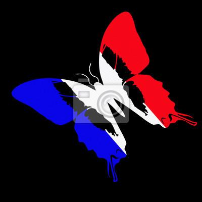 Papillon Bleu Blanc Rouge Drapeau Français Peintures Murales
