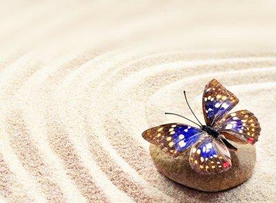 Image Papillon, sable