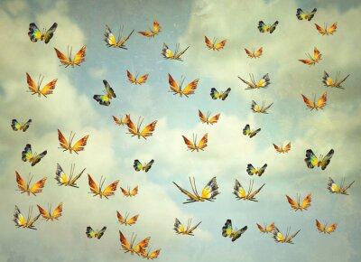 Image Papillons dans le ciel