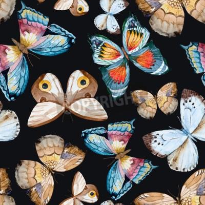Image Papillons illustrés aquarelle