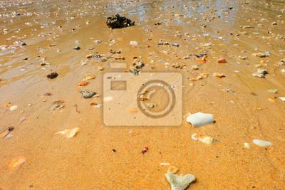 Paysage à l'île d'Andaman, plage, sud de la Thaïlande, Thaïlande.
