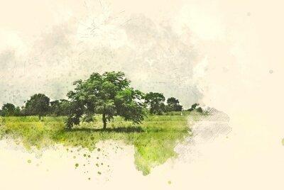 Image Paysage abstrait d'arbres et de champs sur fond de peinture illustration aquarelle.