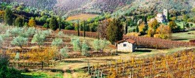 Image Paysages d'automne magiques dans la campagne toscane. Région viticole de l'Italie