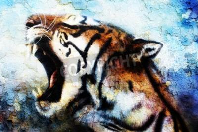Image Peinture Sumatran Tiger Roaring