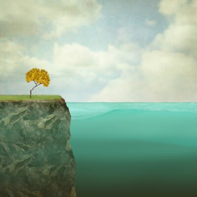 Image Petit arbre perché