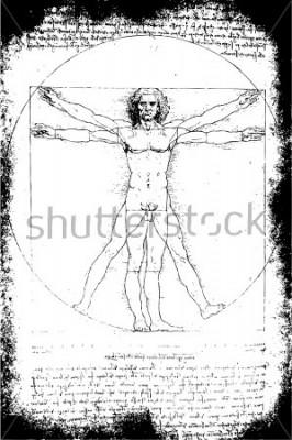 Image Photo de l'homme de Vitruve par Léonard de Vinci de 1492 sur fond texturé.