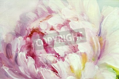 Image Pink and white peony background. Oil painting floral texture