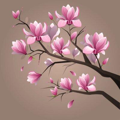 Image Pink magnolia flowers