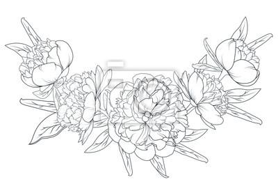 Image Pivoine Rose Fleurs Laurier Feuillage Guirlande Vecteur