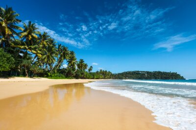 Image Plage idyllique. Sri Lanka